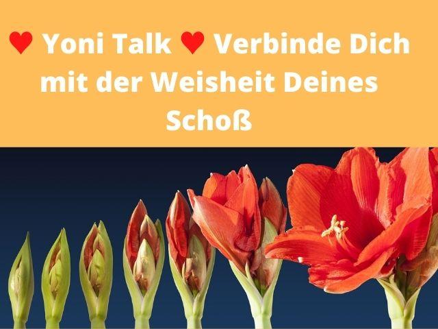 Yoni Talk